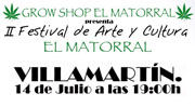 Festival Arte y Cultura - Villamartin