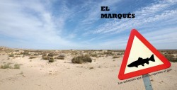 El Marqus - Los Salmones que nunca regresan al mar