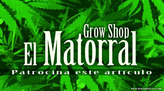 Grow Shop El Matorral y El Musiquiátrico