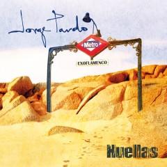 De lo brillante, moderno y nuestro: Huellas flamencas de Jorge Pardo