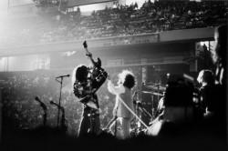 MC5 - Directo en Detroit - Foto de Robert Matheu