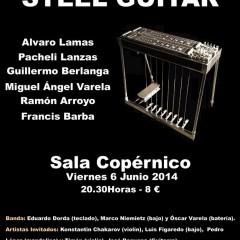1º Festival Español de Steel Guitar